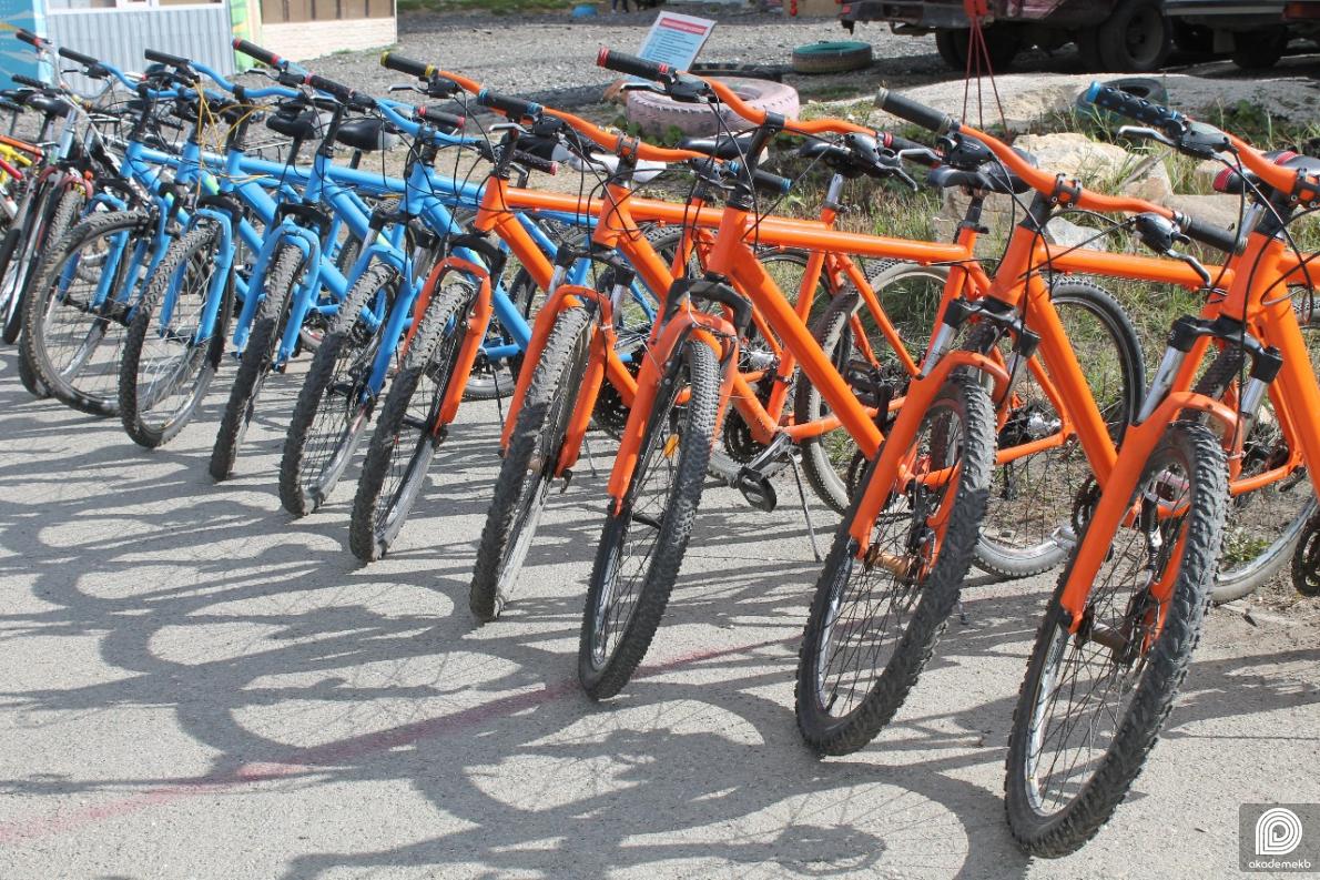 Погоня за украденным велосипедом: житель Академического вернул похищенный транспорт