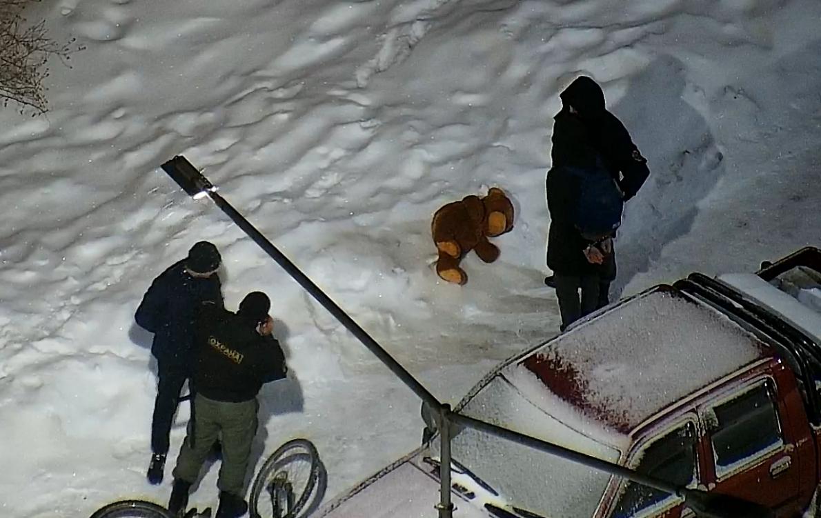 Взяли с поличным: в Академическом задержали воришек велосипеда и плюшевого медведя