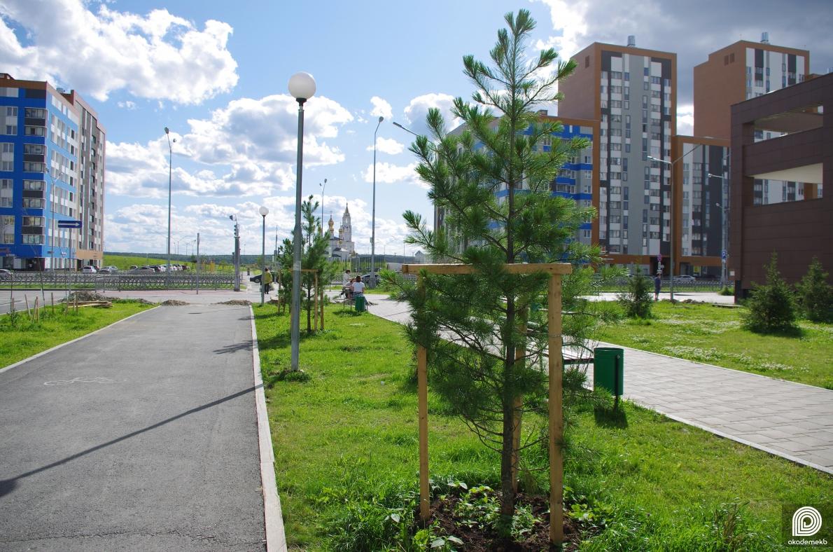 На субботнике высадят более 500 саженцев в рамках акции «3000 деревьев к 300-летию Екатеринбурга»